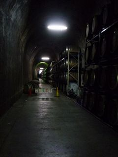 トンネルの駅1.jpg