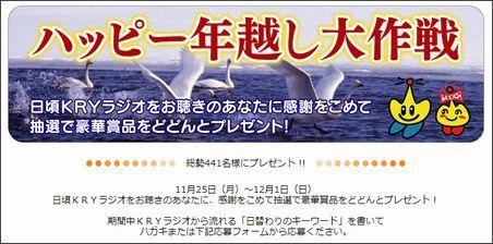 ハッピー年越し大作戦.jpg