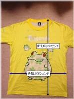 フロッグスタイルTシャツ(サイズ).jpg