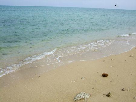 百名ビーチの白い砂浜と青い海.jpg