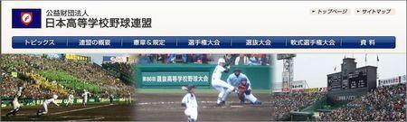 第87回選抜高等学校野球大会.JPG